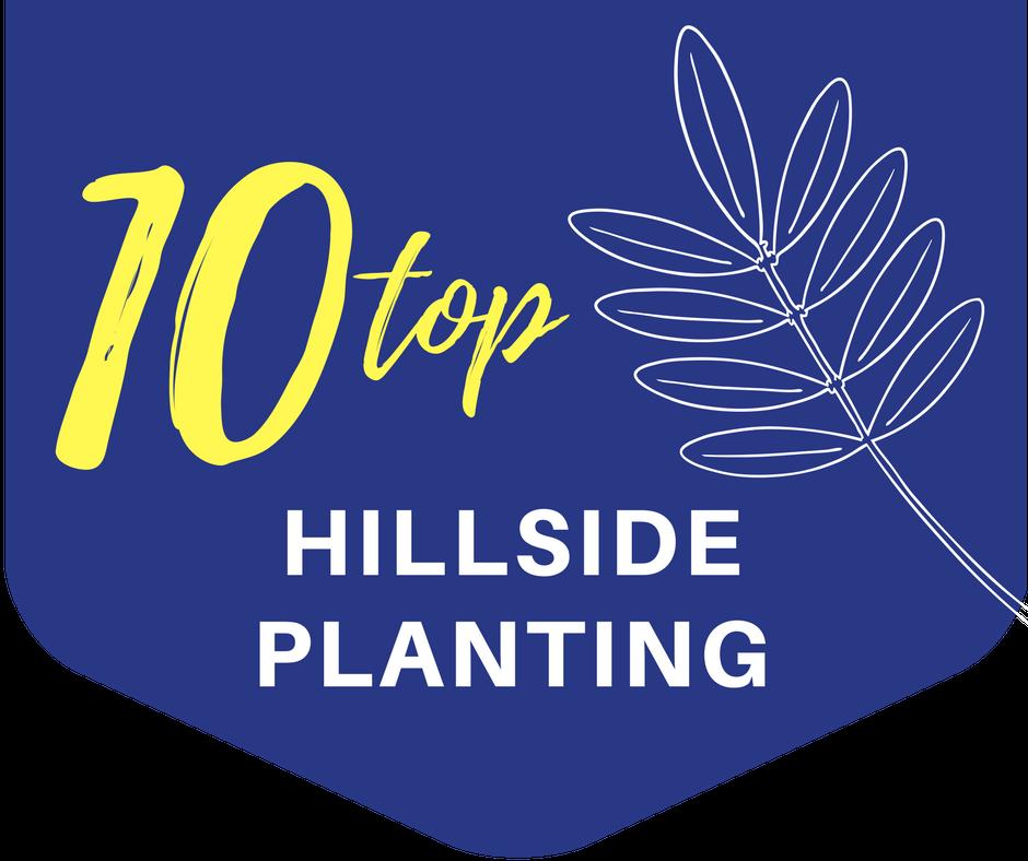 banner_hillside planting